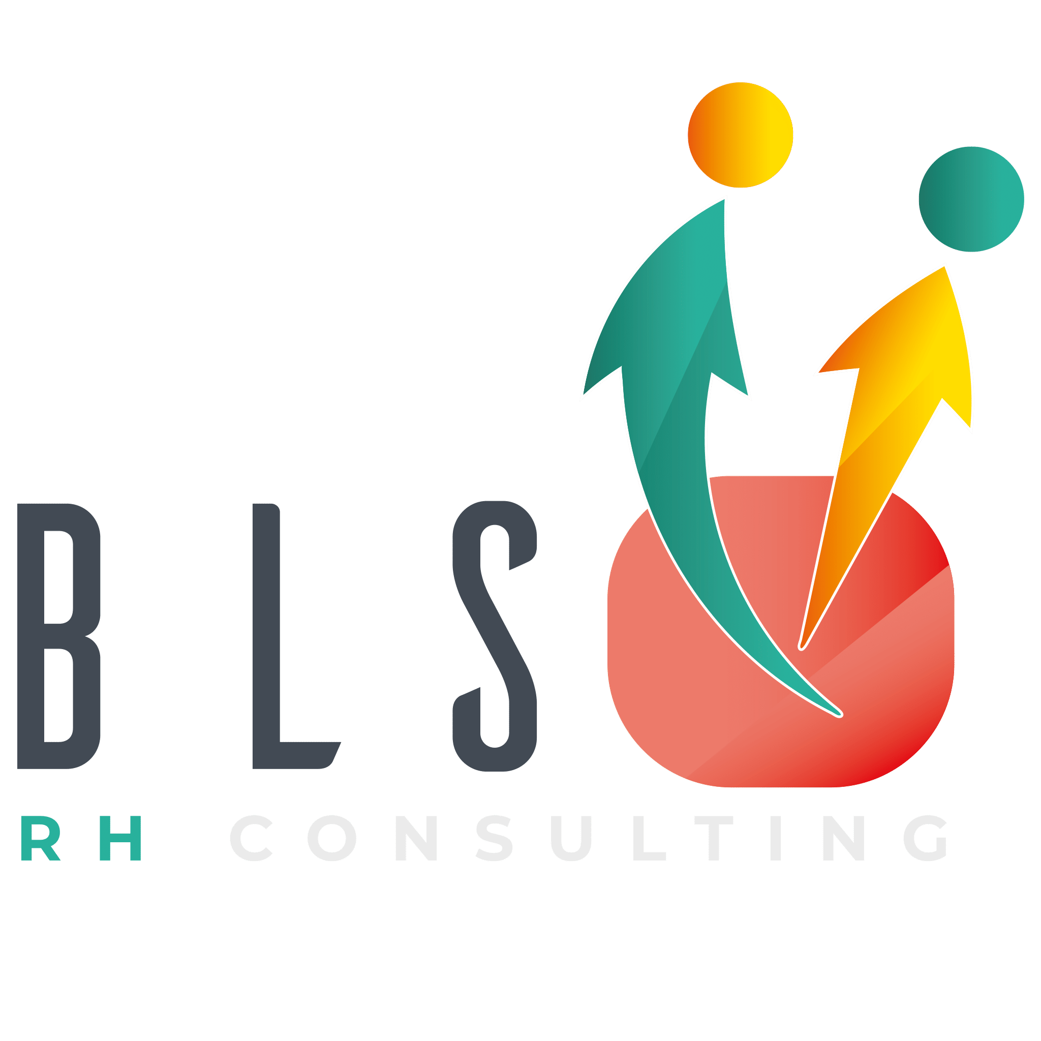 BLS RH Consulting